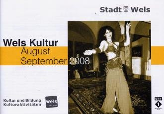 stadt_wels_aug_sept_08.jpg